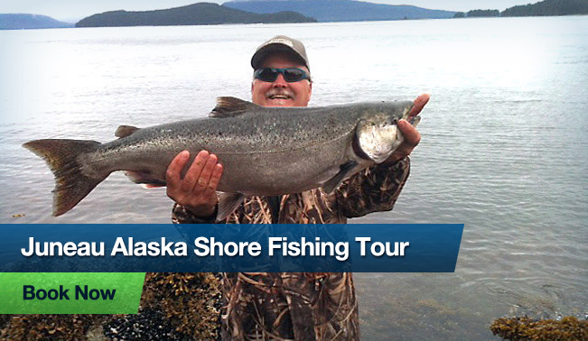 Shore fishing in juneau alaska hooked on juneau whale for Ak fishing license